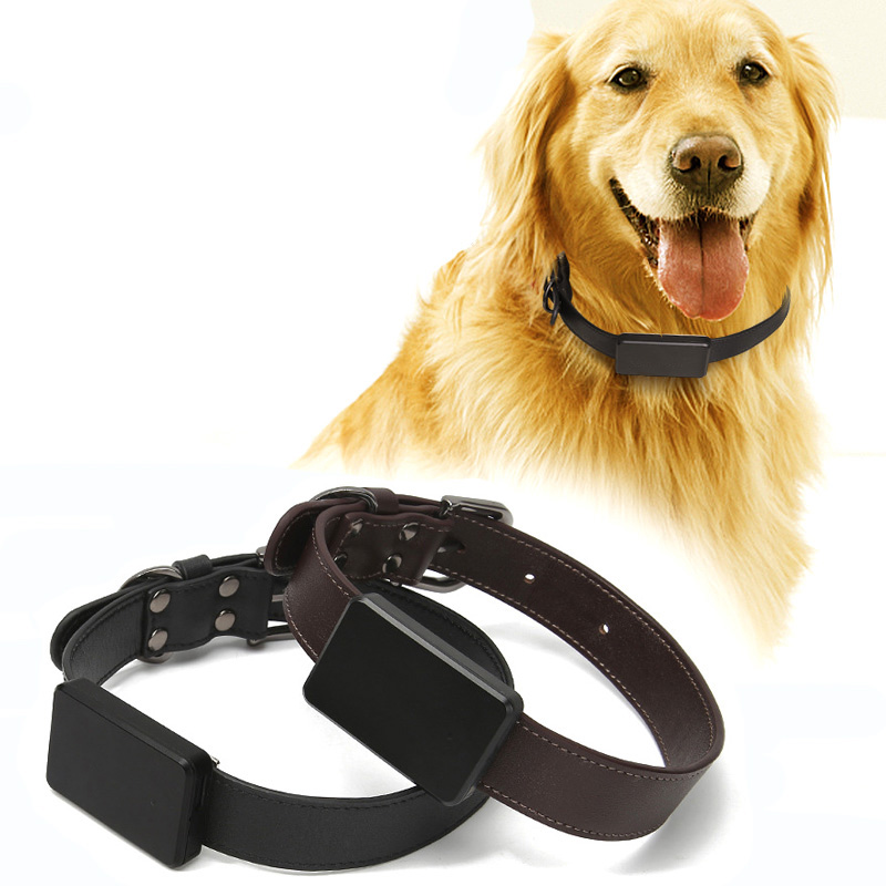 Whistle is a GPS tracking device for dogs and cats that  uses GPS technology for active tracking and cellular technology.it  consists of a tracking unit attached to the pet's collar or harness.