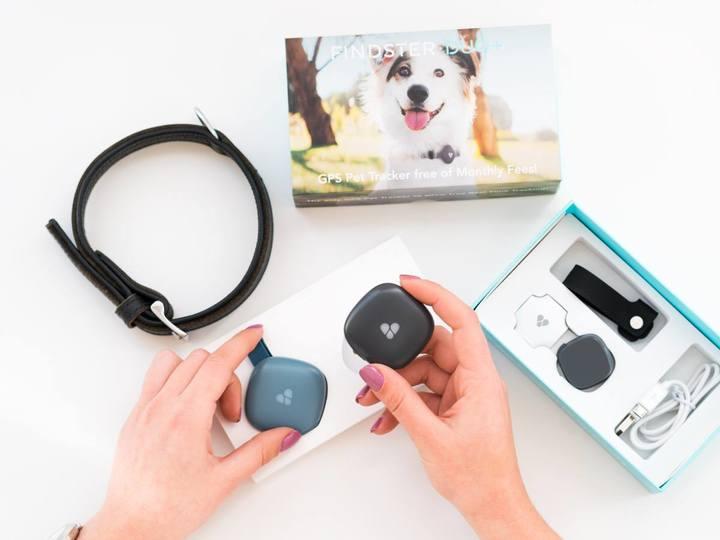 FindsterDuoGPS Pet Tracking