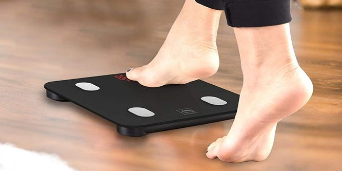 Comparing RENPHO and FITINDEX Body Fat Scale 2020 Review
